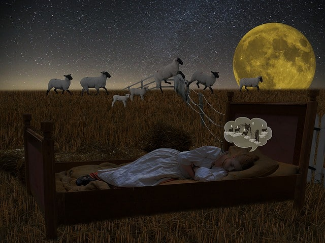 Insomnia harms and treatments