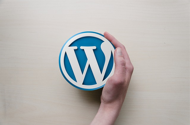 9 best wordpress plugins for beginners