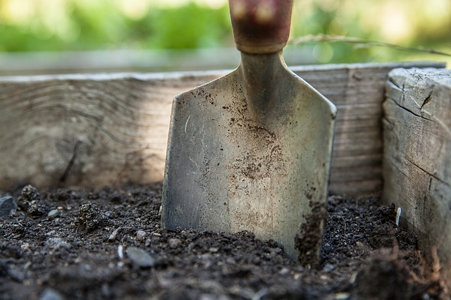 Tools for gardening beginners spade